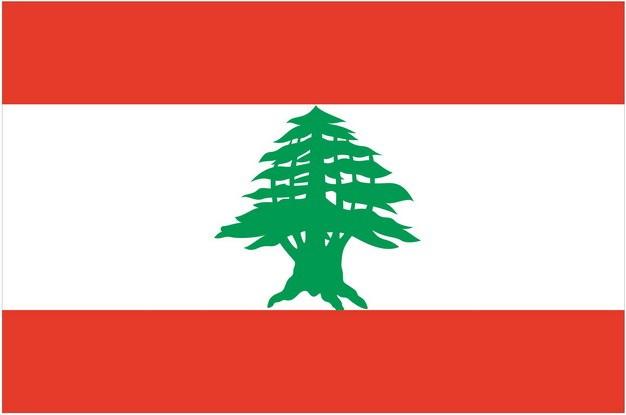 标准版黎巴嫩国旗图片素材 科学地理-第1张