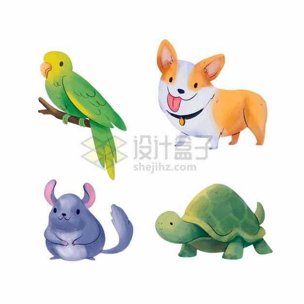 怪异的卡通鹦鹉狗狗龙猫和乌龟等各种宠物png图片素材
