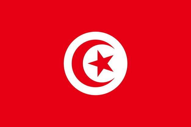 标准版突尼斯国旗图片素材