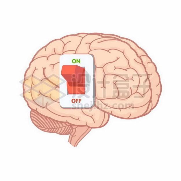 大脑上的开关按钮902023png矢量图片素材 健康医疗-第1张