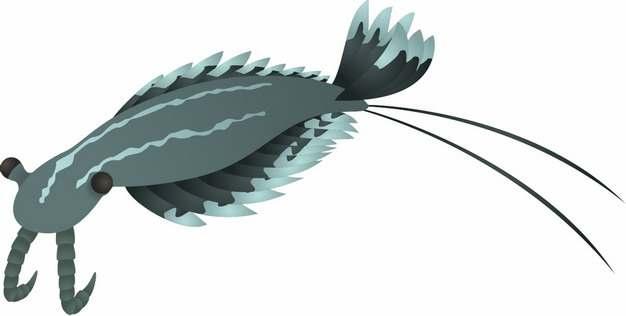 奇虾远古生物手绘插画506477png免抠图片素材