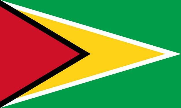 标准版圭亚那国旗图片素材