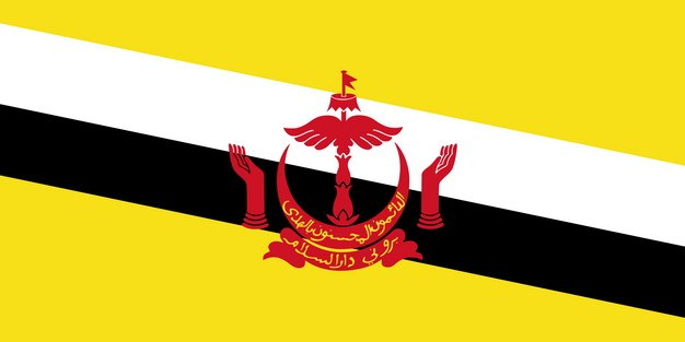 标准版文莱国旗图片素材 科学地理-第1张