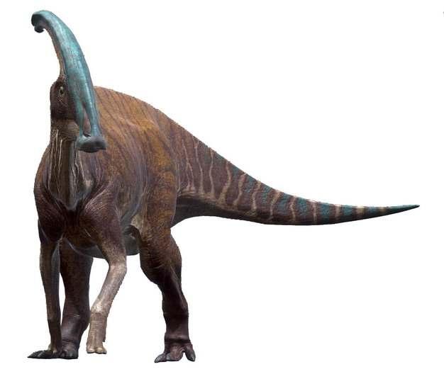 鸭嘴龙恐龙远古生物466962png免抠图片素材