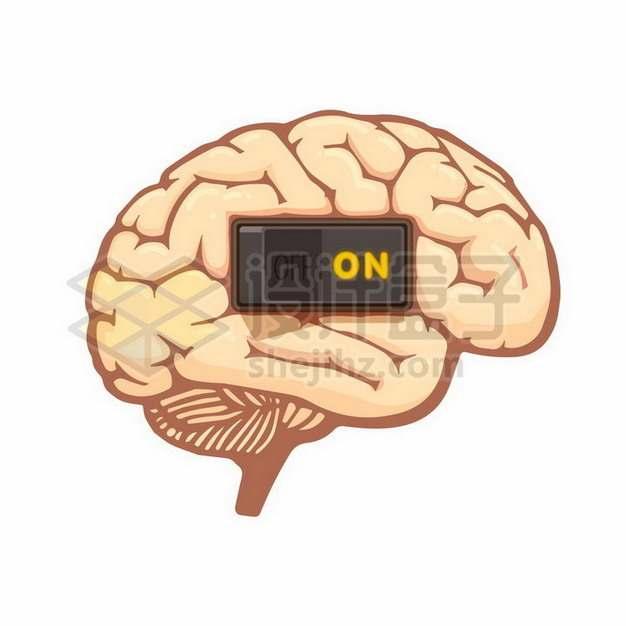 大脑上的开关按钮775926png矢量图片素材