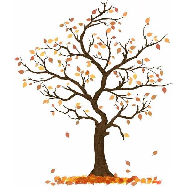 秋天树叶掉光的大树手绘插画555532png图片免抠素材