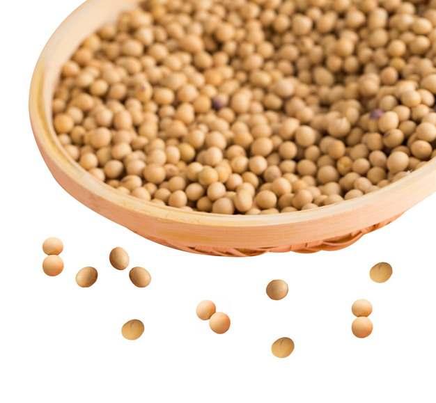 竹篮和散落的黄豆大豆348760png图片免抠素材
