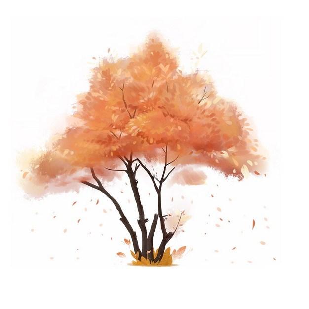 秋天飘落树叶的大树水彩插画892855png图片免抠素材 生物自然-第1张