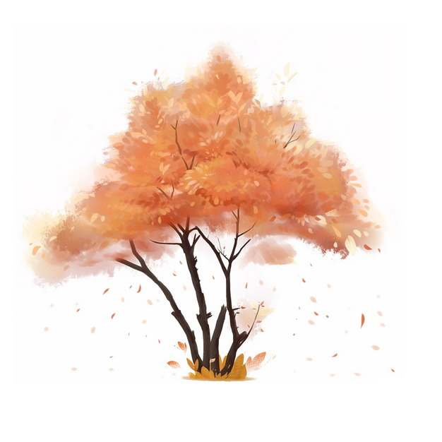 秋天飘落树叶的大树水彩插画892855png图片免抠素材