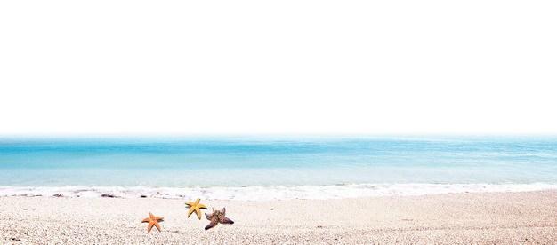 蓝色的大海和海滩沙滩上的海星旅游风景区760594png图片素材 生物自然-第1张