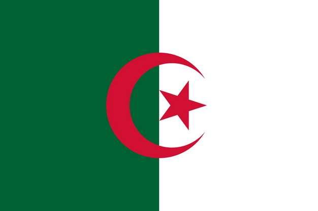 标准版阿尔及利亚国旗图片素材