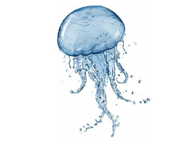 创意蓝色水花组成的水母913453png图片素材 生物自然-第1张