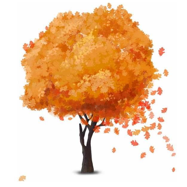 秋天金黄色树叶的大树水彩插画904781png图片免抠素材