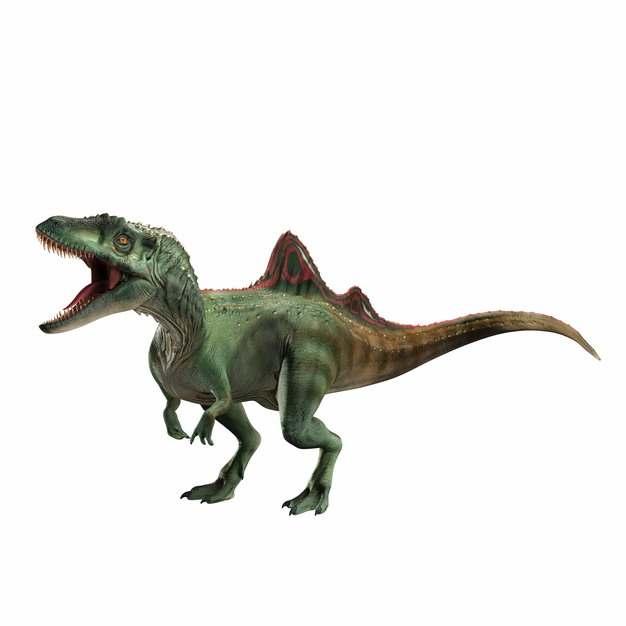 凶猛的棘龙食肉恐龙638824png免抠图片素材