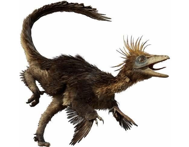 窃蛋龙恐龙远古生物101549png免抠图片素材