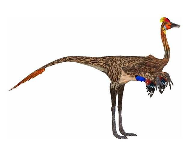 色彩鲜艳的似鸟龙恐龙468426png免抠图片素材