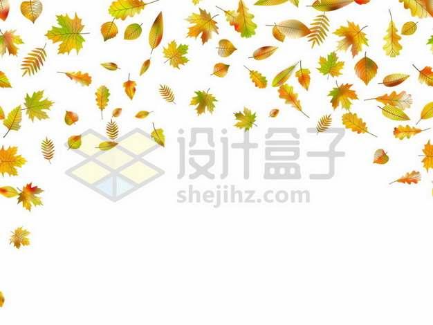 飘落的秋天树叶装饰877774png矢量图片素材