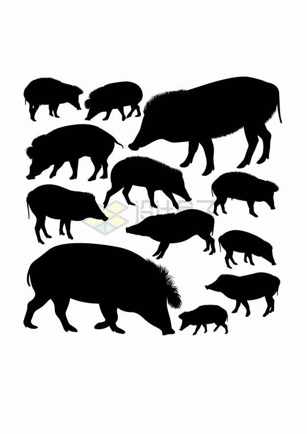 野猪家猪疣猪西猯动物剪影合集png图片素材