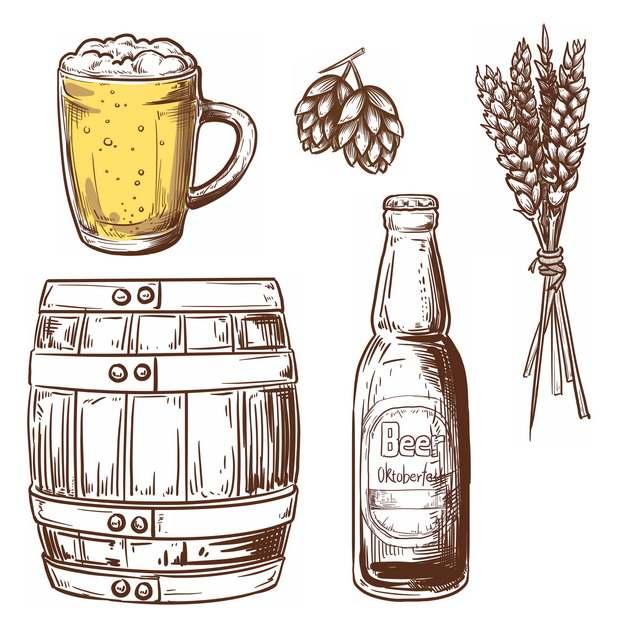 啤酒杯啤酒花小麦酒桶和酒瓶等手绘插画627690免抠图片素材