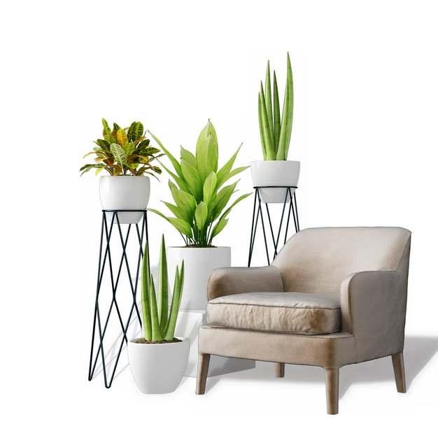 单人沙发和各种花盆和架子583681免抠图片素材
