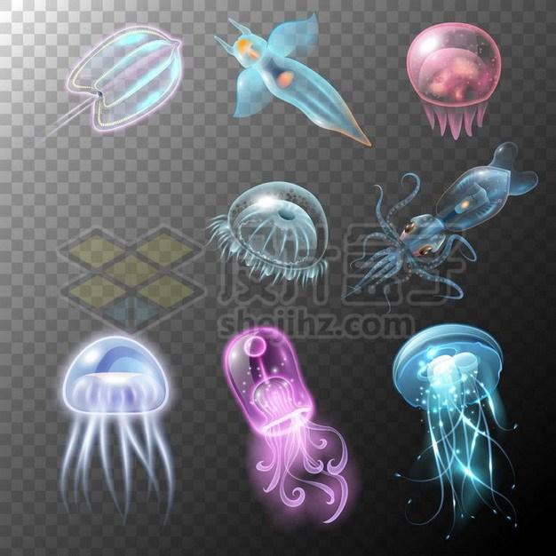 各种漂亮的发光冰海小精灵乌贼水母等发光海鱼656881png矢量图片素材 生物自然-第1张