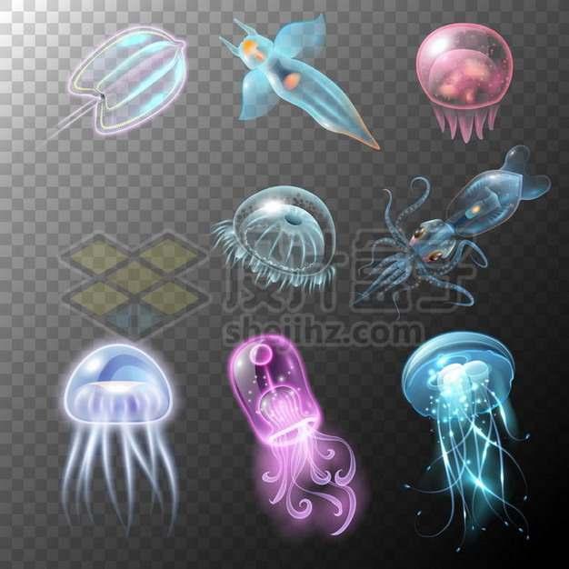 各种漂亮的发光冰海小精灵乌贼水母等发光海鱼656881png矢量图片素材