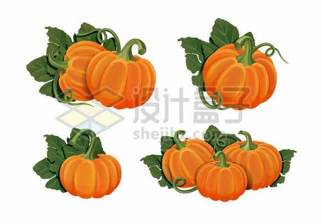 4款带叶子的南瓜672378png免抠图片素材