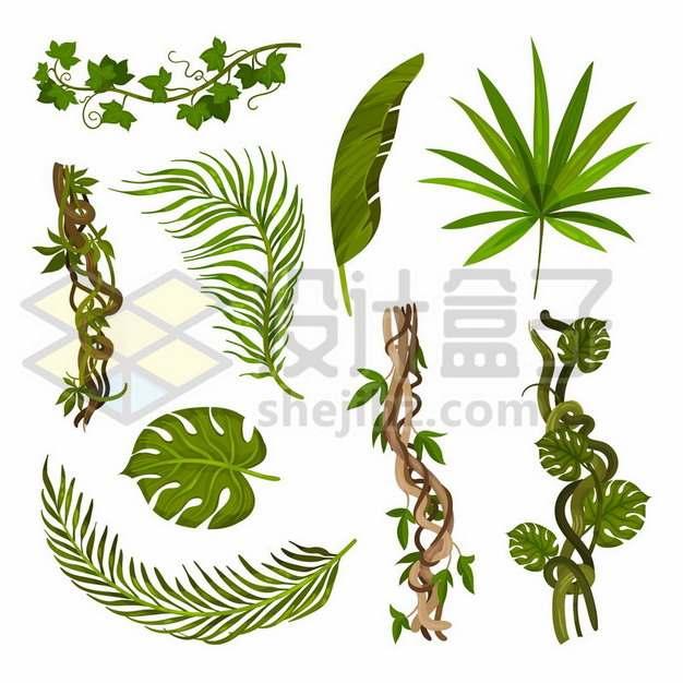 各种葡萄藤热带藤蔓树叶装饰491432免抠矢量图片素材