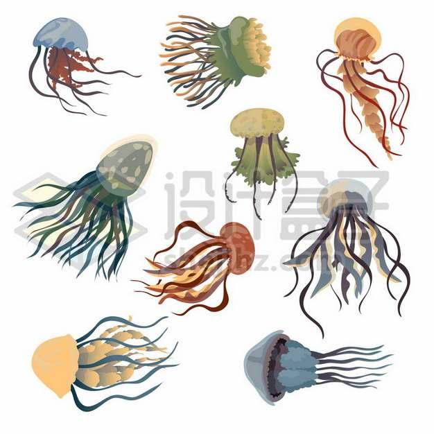 9款水母海洋动物519785免抠矢量图片素材