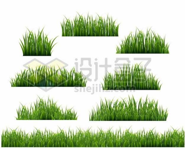 8款绿色青草坪草丛装饰325347png免抠图片素材