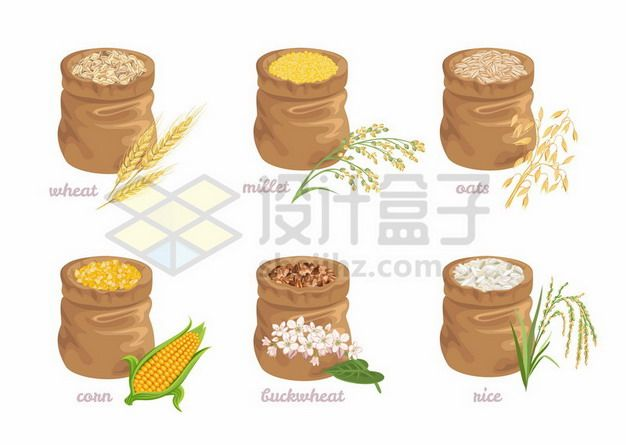 6款布袋子中的小麦小米大麦稻谷玉米荞麦等粮食608303矢量图片免抠素材