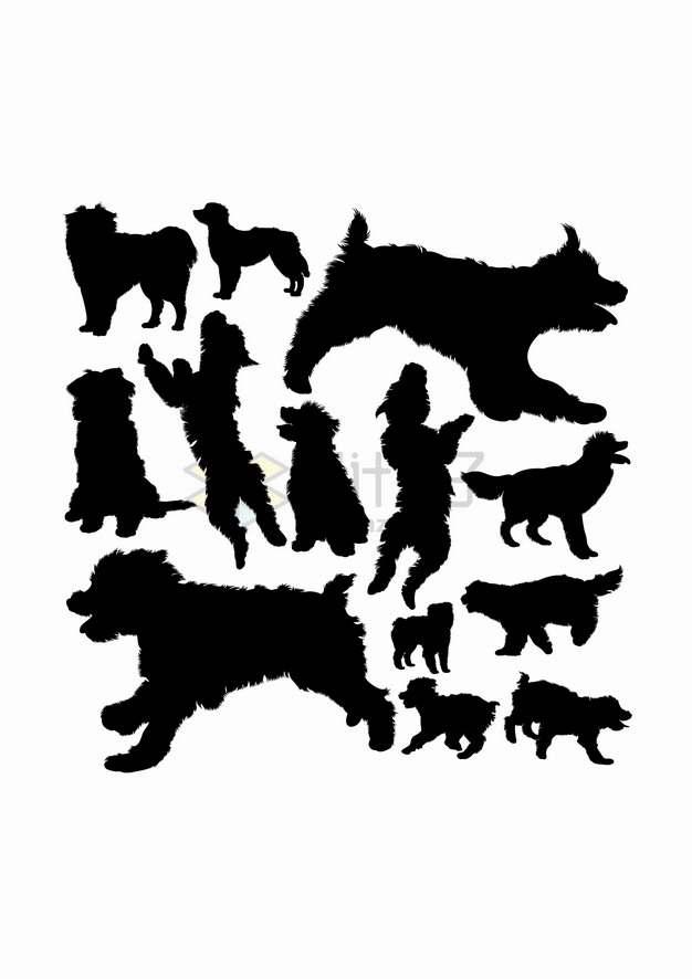 泰迪犬狗狗宠物狗动物剪影合集png图片素材