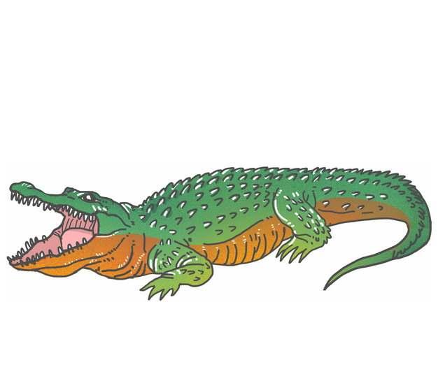 长大嘴巴的鳄鱼335819png图片免抠素材