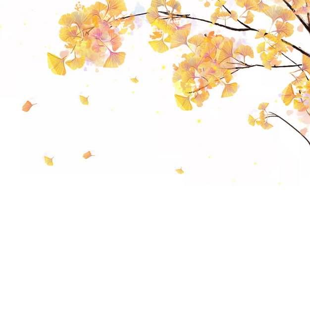 黄色的银杏树叶彩绘插画924792png图片免抠素材