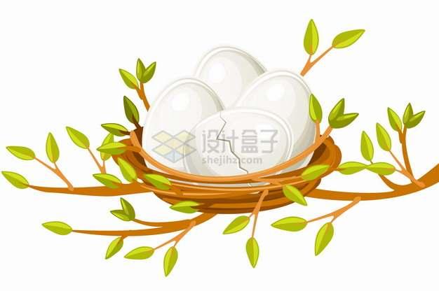 卡通树枝上鸟窝中的白色鸟蛋png图片素材