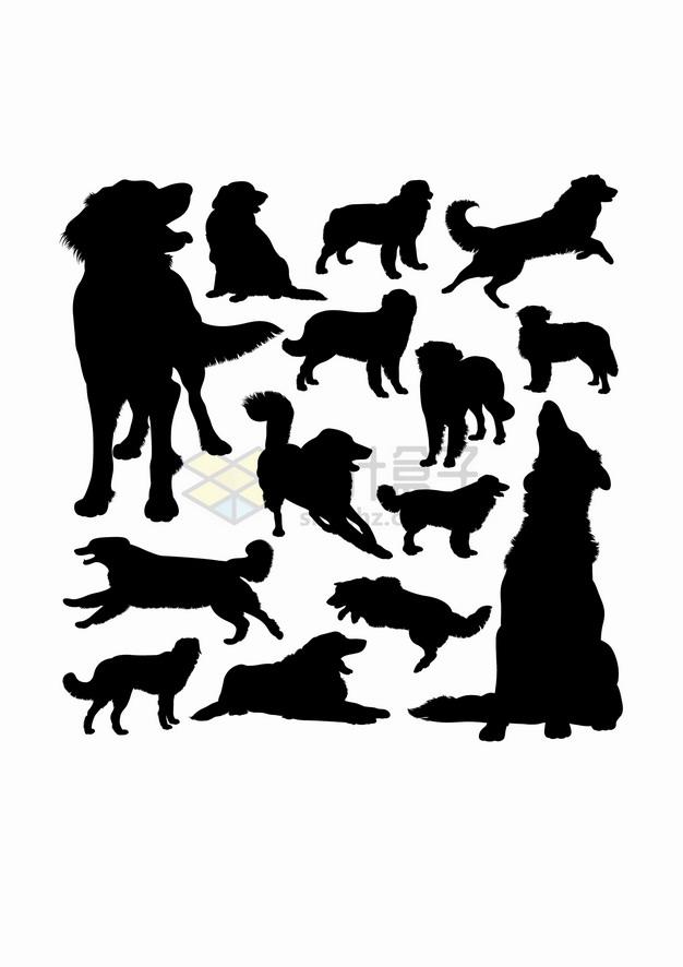 金毛犬狗狗宠物狗动物剪影合集png图片素材 生物自然-第1张