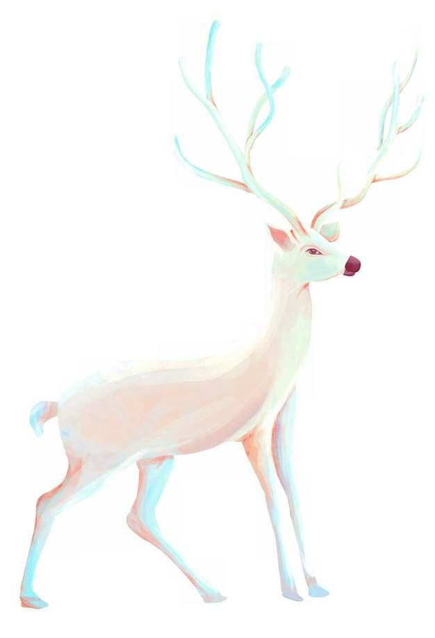 一只美丽的白鹿688708png图片素材