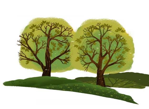 两棵大树和草地手绘插画319147png图片免抠素材