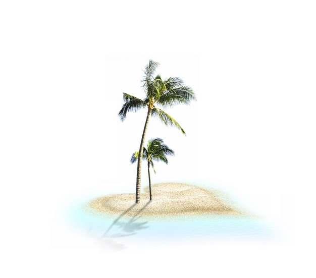 心形沙滩和海滩上的椰子树827194png图片素材