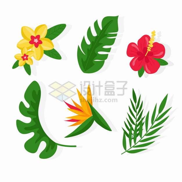 粉色红色小花和热带花卉鲜花叶子png图片素材
