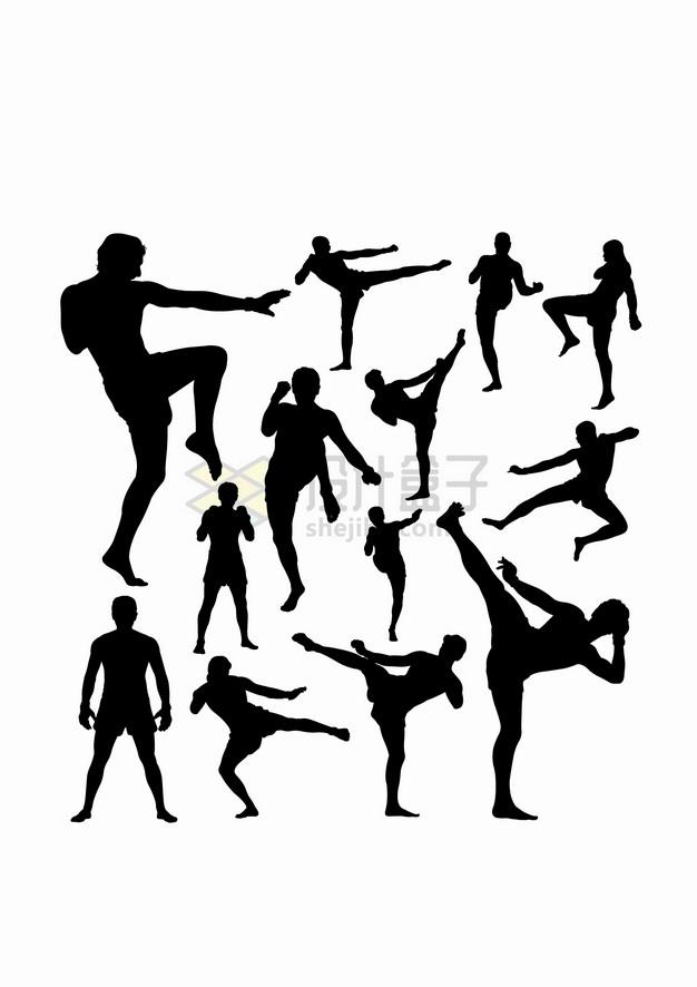 功夫跆拳道泰拳格斗术武术剪影合集png图片素材 人物素材-第1张