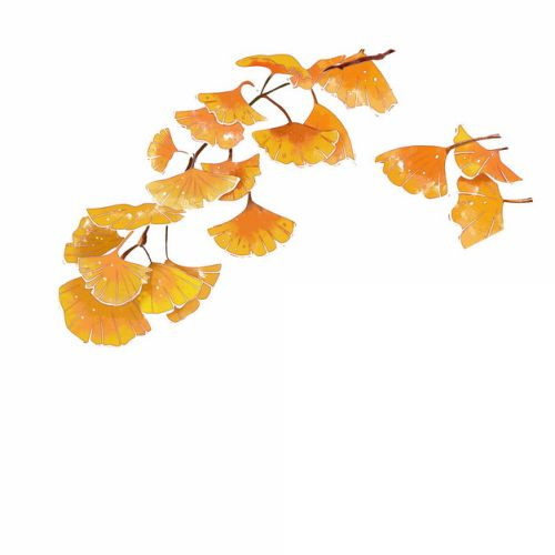 黄色的银杏树叶彩绘插画454310png图片免抠素材