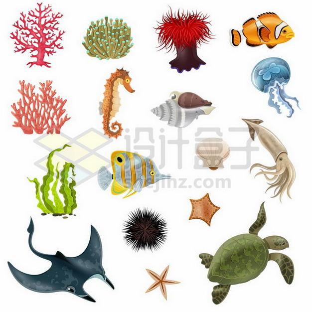 红珊瑚小丑鱼海马海螺水母海带乌贼海龟海胆蝠鲼魔鬼鱼等海洋鱼类526230png矢量图片素材 生物自然-第1张