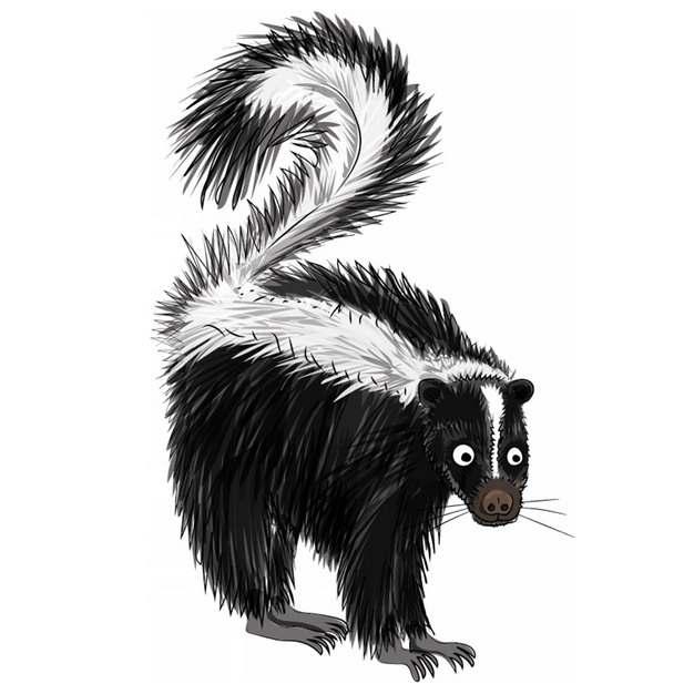 一只臭鼬野生动物手绘插画812866png免抠图片素材