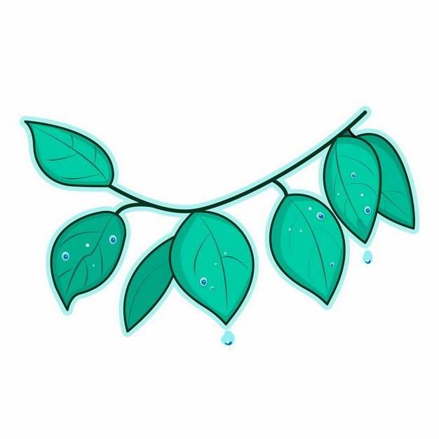 绿色的树枝和树叶511824图片素材