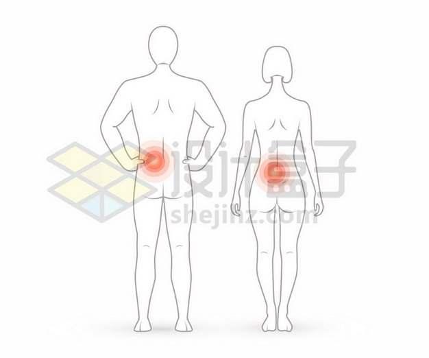 线条男女人体画像和腰疼示意图492098矢量图片免抠素材