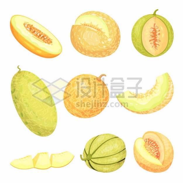 9款哈密瓜美味水果304757png矢量图片素材