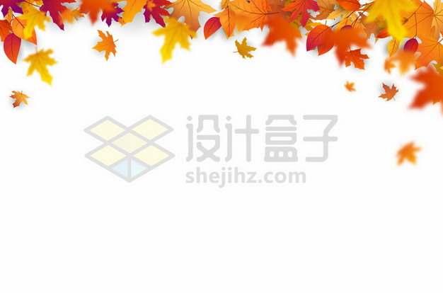 金秋深秋橙色枫叶装饰效果758230eps矢量图片素材
