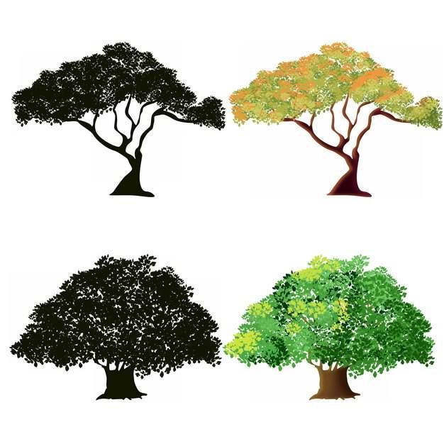 两款参天大树和树木剪影318576png图片素材