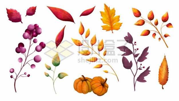 秋天里的各种红色黄色树叶果实和南瓜202401图片免抠矢量素材